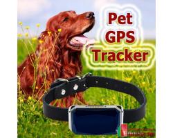 GPS ошейник для животных PET TRACKER G12P