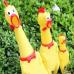 Сумасшедшая кричащая курица