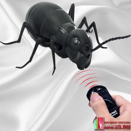 """Робот Муравей """"ANT"""" на ИК-управлении"""