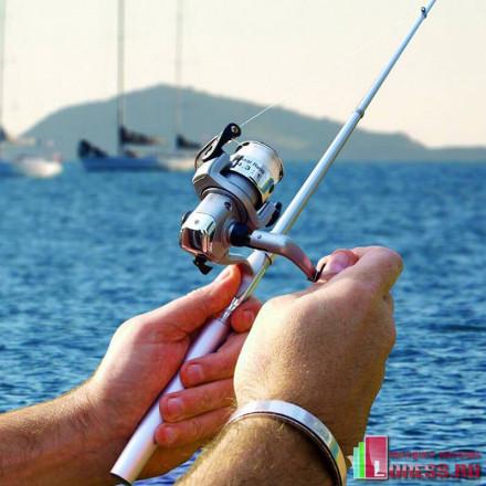 Мини-удочка ручка FISH PEN